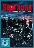 Die Sopranos - Staffel 5 (4 DVDs)
