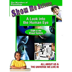 Look Into the Human Eye