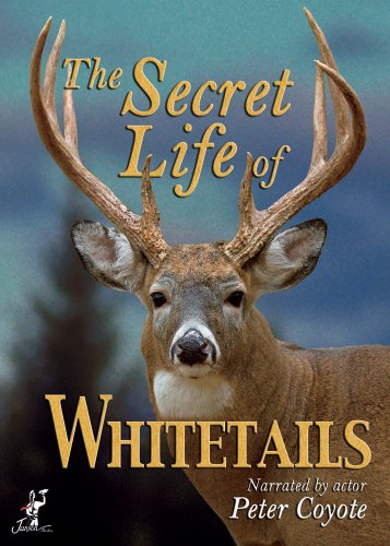Secret Life of Whitetails, The