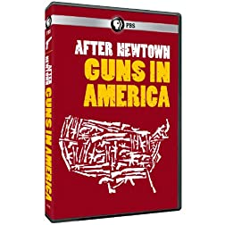 After Newtown: Guns in America