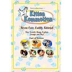 Kitten Kommotion