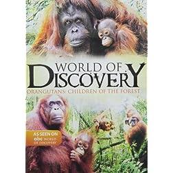 Orangutans: Children of the Forest