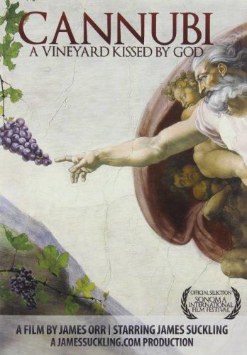 Cannubi: A Vineyard Kissed By God