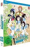 2. Staffel - Vol. 1 (Limited Edition) [Blu-ray]