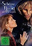 Die Schöne und das Biest - Staffel 1 (6 DVDs)
