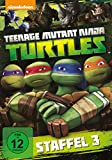 Teenage Mutant Ninja Turtles - Season 3 (2 DVDs)