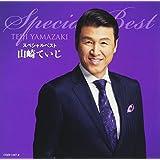 Yamazaki Teiji Special Best