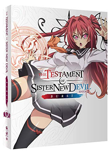 Testament of Sister New Devil Burst Collectors BD [Blu-ray]